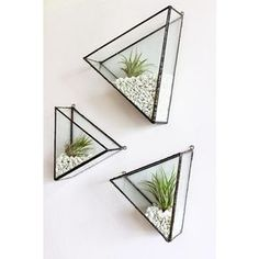 """""""These charming handmade triangles are amazing, perfect home for air plants @montibymonti Mix n match with another shape to create your own geometric…"""""""