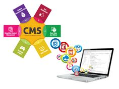 A CMS (content management system) allows publishing, editing, and modifies the content of a site from a central interface to all the authorized users.