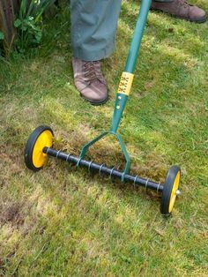 Lightly scarify the lawn, using a spring-tined rake or a mechanical scarifier to…