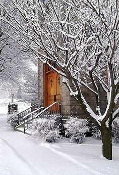 snowy winterscape