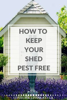 How to Create and Maintain a Pest Free Shed - Love Chic Living - Garden shed Shed-plans Source by taliaterrific - Allotment Shed, Garden Tool Shed, Garden Sheds, Garden Shed Exterior Ideas, Cedar Garden, Garden Arbor, Backyard Sheds, Easy Garden, Garden Tips