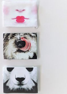 Japanese Face Masks - Zenbu Home Japanese Face, Japanese Things, Happy Panda, Halloween Face Mask, Masks Art, Lip Designs, Fashion Face Mask, Mask Design, Kids Fashion