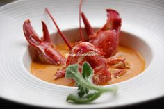 Carapace, Scampi, Fine Dining, Thai Red Curry, Steak, Soup, Dishes, Cooking, Ethnic Recipes
