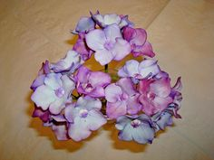 Bec's Sugar Hydrangea blossoms
