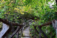 Bridge 2 #emencanyon