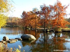 autumn westpark munich Munich, Pop Up, Paradise, Autumn, River, Natural, Gallery, Photography, Outdoor