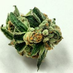 Cannabis Bud Crystals THC weed indica sativa marijuana beautiful