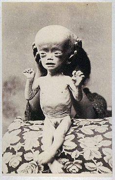 """Alien"" - Akimitsu naruyama collection"