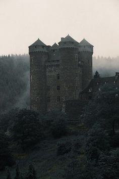 grafika castle and medieval Gothic Aesthetic, Book Aesthetic, Character Aesthetic, Medieval Castle, Medieval Fantasy, Dark Fantasy, Elias Und Laia, Dark Castle, Château Fort