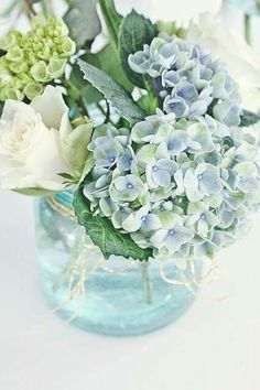 hydrangea garden care VIBEKE D - gardencare Green Hydrangea, Hydrangea Flower, Hydrangeas, Hydrangea Garden, Arrangements D'hortensia, Blue Flower Arrangements, Fresh Flowers, Beautiful Flowers, Vibeke Design