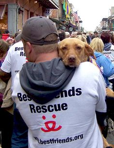 Nothing like the look an animal has when it's been rescued.