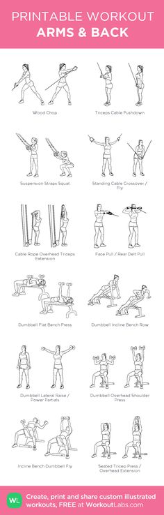 ARMS & BACK: my visual workout created at WorkoutLabs.com • Click through to customize and download as a FREE PDF! #customworkout