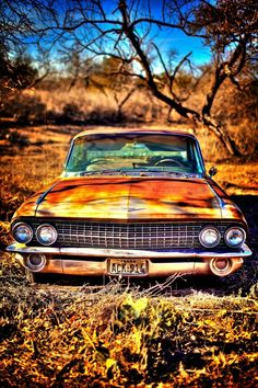 abandoned Cadillac by claireworx Dslr Background Images, Picsart Background, Photo Backgrounds, Abandoned Cars, Abandoned Places, Chevrolet Bel Air, Classic Trucks, Classic Cars, Rusty Cars