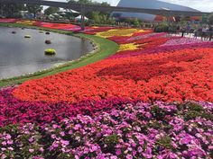 "24th Annual EPCOT ""International Flower"