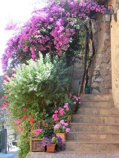 Village provençal - Biot