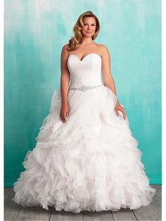 Marvelous Lace & Organza Sweetheart Neckline Ball Gown Plus Size Wedding Dresses with Lace Appliques