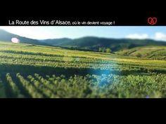 Vidéo Sur la Route des Vins d'Alsace