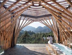 Tree House Designed by IanD Studio