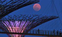 9 vistas de la 'superluna' en el mundo - En Singapur