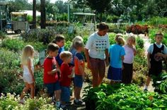 Butterfly Encounter Oviedo, Florida  #Kids #Events