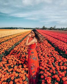 Let me add a bit of colour to your world 🌈🌷✨fields for days in the Netherlands! Flower Feild, Travel Pictures Poses, Spring Aesthetic, Stylish Girl Pic, Picture Poses, Belle Photo, Aesthetic Pictures, Photography Poses, Photoshoot