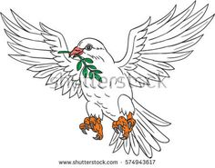 Drawing sketch style illustration of a dove flying with olive leaf in its beak looking to the side set on isolated white background.  #dove #sketch #illustration