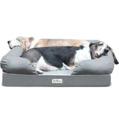 Ultimate Dog Bed & Lounge      Check this out>>>>>>>   http://amzn.to/1T0NZW6