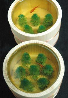 Goldfish in resin painting by Riusuke Fukahori.