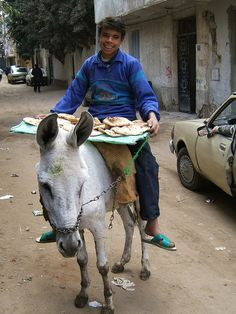 A boy riding a donkey sells fresh pita bread in the streets of Giza, Egypt