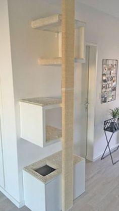 Pet Furniture, Furniture Design, Cuba, Homemade Stuffed Animals, Pet Pigs, Scratching Post, Cat Wall, Cat Tree, Catio