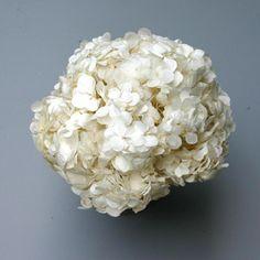 PERFECTION HYDRANGEA WHITE