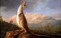 George Stubbs's paintings inspired by Captain Cook to stay in Britain  - Telegraph