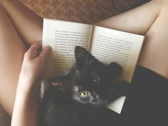 Black kitten with book >> reading, writer
