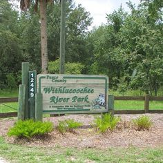 Withlacoochee River Park. Pasco County operates this regional park near the Withlacoochee River. The District provides the county with the use of 146 acres of the Green Swamp – West Tract to accommodate riverfront access for the canoe launch, dock and 1.5 miles of hiking trails. The Withlacoochee River Park offers visitors access to a wild and scenic portion of the river and a mosaic of habitat communities, from high sandhills to low riverine swamp.