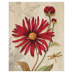 You should see this Crimson Blooms Canvas Art on Daily Sales!