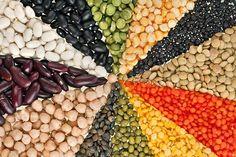 Da venerdì 4 a domenica 6 marzo, Napoli accoglierà la seconda edizione di Leguminosa, premiata Fao, mostra/mercato internazionale ideata e organizzata da Slow Food Campania, per avvicinare il grand…