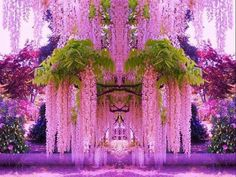 Funny pictures about A purple wisteria flower garden in Japan. Oh, and cool pics about A purple wisteria flower garden in Japan. Also, A purple wisteria flower garden in Japan. Wisteria Japan, Wisteria Garden, Purple Wisteria, Flowers Garden, Wisteria Tree, Chinese Wisteria, Garden Plants, Pink Garden, Garden Seeds