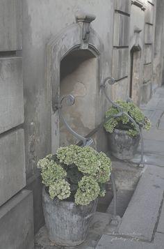 Sanctuary: COPENHAGEN CHRONICLES III