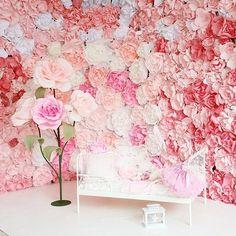 paper backdrop Студия бумажных цветов Paper Flowers