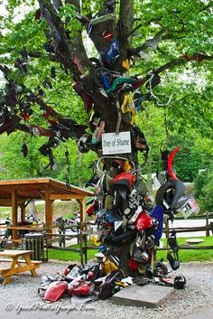 """Tail of the Dragon, Deals Gap """"Tree of Shame"""". Yes, I had to stop by this tree because I got hurt on at """"The Wall"""". Places To See, Places Ive Been, Sportbikes, Rv Life, Tennessee, Harley Davidson, Gap, The Neighbourhood, Dragon"""
