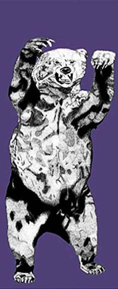 IEGC-The Bear-Purple