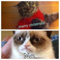 Merry Christmas! No...