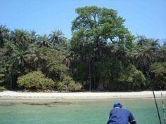 Meio island - Bijagos Archipelago. Guinea Bissau