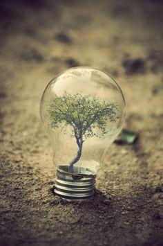 Impressive Miniature World Inside Light Bulbs by Adrian Limani - Wave Avenue