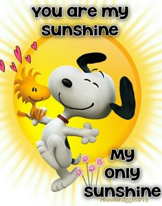 Snoopy and Woodstock with hearts and big yellow sun. Quote, you are my sunshine, my only sunshine! Peanuts Gang, Peanuts Cartoon, Peanuts Movie, Charlie Brown Quotes, Charlie Brown And Snoopy, Snoopy Et Woodstock, Snoopy Song, Goodnight Snoopy, Meu Amigo Charlie Brown
