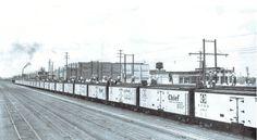 Icing the reefers in Winslow, Ariz. Train Car, Train Rides, Vintage Trains, Bonde, Burlington Northern, Rolling Stock, Model Train Layouts, Bahn, Trains