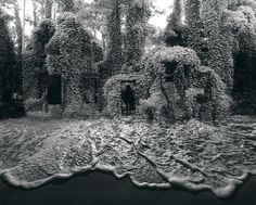 Jerry Uelsmann, Untitled, 1982, 1982, Pictura Gallery