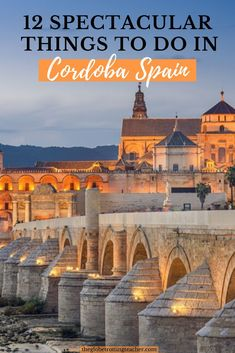 Things to Do in Cordoba Spain | One day in Cordoba Spain | Planning a southern Spain itinerary with a stop in Cordoba? Use this guide to plan the best things to do in Cordoba Spain in 1 day from the Mezquita to the famous patios with flowers. Get tips about how to get to Cordoba, where to eat, and if you decide to stay the night, where to stay in Cordoba, too. #travel #spain #cordoba