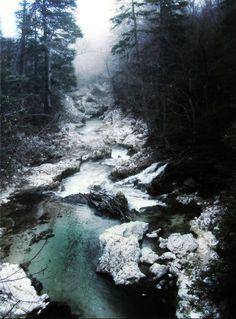 Nature 003