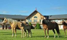 1000 images about weekend getaways and day trips on for Cabine millersburg ohio paese amish